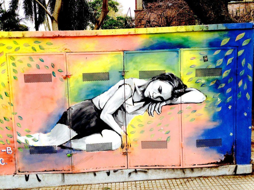 graffiti présents dans le quartier de Palermo Soho, Street Art Buenos Aires